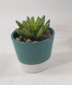 Special Design England USA Japan Artificial Mini Potting Succulent pictures & photos