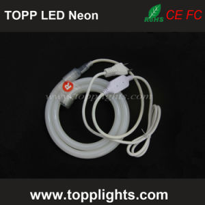 Christmas Decoration LED Strip Light LED Strip Neon pictures & photos