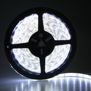 Display Light, UL Certification, SMD3528 12V LED Flexible Strip Light for Decoration