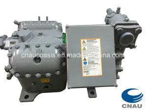 Germany Dwm Copeland, Dwm Copeland Compressor, Copeland Simi-Hermetic Compressor, Dlle-401-Ewl/ D3ss1-1500-Ewl pictures & photos