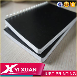 Wholesale School Stationery Custom A5 PP/PVC Hardcover Spiral Notebook pictures & photos