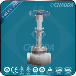 API/BS1873 Cryogenic Stainless Steel Globe Valve pictures & photos