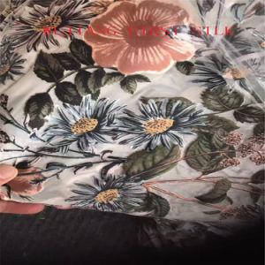 Velvet Silk Fabric, Silk Vevlet Fabric, Nylon Velvet Fabric pictures & photos