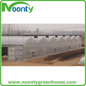 Plastic Arch Greenhouse From Big Greenhouse Manufacturer in China pictures & photos