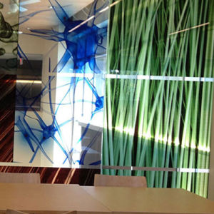 Customized Indoor Beautiful Design Decorative Frost Window Film for Signs pictures & photos