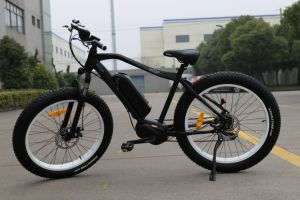 250W Bafang MID Motor Fat Tire Mountain Electric Bike pictures & photos