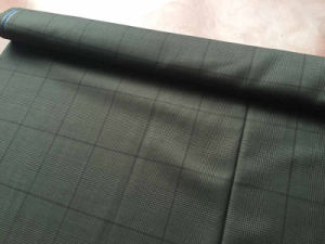 Gray Lattice Wool Fabric pictures & photos