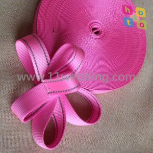 25mm Flat Nylon Webbing for Dog Leashes and Collars pictures & photos