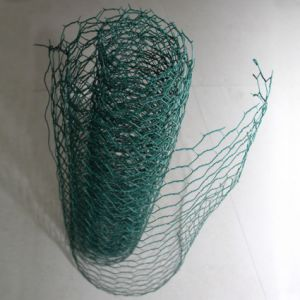 Animal Hexagonal Wire Mesh Corrosion Protection pictures & photos
