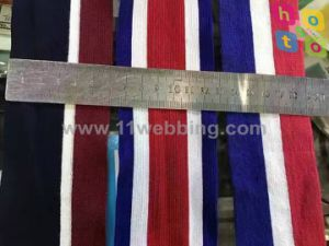 Clothing Accessories Bias Tape Colorful Elastic Webbing with Polyester pictures & photos