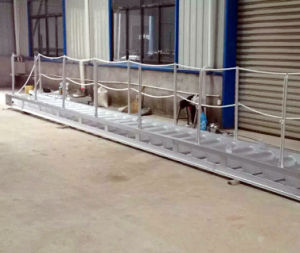 Marine/Boat/Ship/Cargo/Wharf Steel/Aluminium/Stainless Steel Vertical/Gangway Ladders pictures & photos