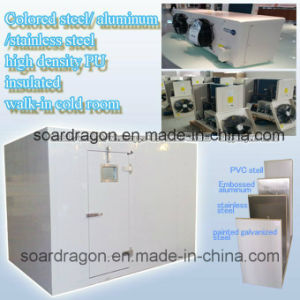 Color Steel/Aluminum/Stainless Steel High Density PU Insulated Walk-in Cold Room pictures & photos