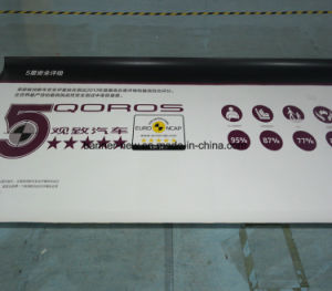 High Resolution Outdoor Double Side Printing Vinyl Banner (SS-VB111) pictures & photos