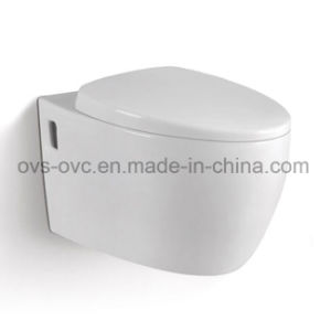 Foshan Sanitary Ware Russia Wc Toilet Bowl pictures & photos