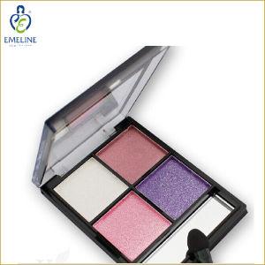 Organic Makeup 4 in 1 Eye Shadow Palette