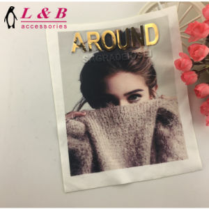 Wholesale New Popular Beautiful Digital Printing Applique pictures & photos