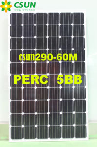 Csun300-60m Perk 5bb Technical Solar Panel