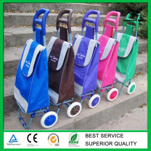 Custom Foldable Shopping Trolley Bag pictures & photos