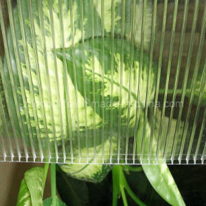 6mm Transparent Polycarbonate Hollow Sheet pictures & photos