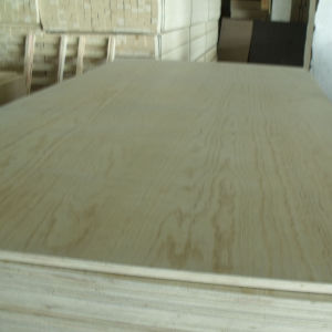 Commercial Plywood Poplar Core Pine Face/Back pictures & photos