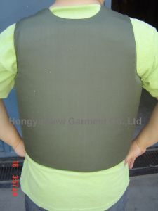 Anti-Riot Body Armor/Full Body Protective Vest (HY-BA012) pictures & photos