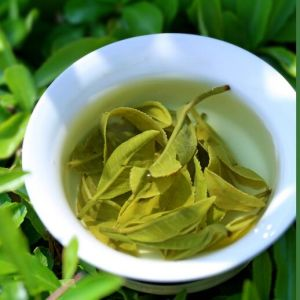 Yunnan Big Leaves Green Tea pictures & photos