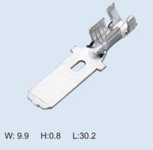 Auto/Car Part Wire/Connector Terminal (0054)