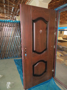 Steel Doors (WX-S-184) pictures & photos