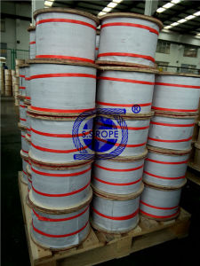 Stainless Steel Wire Rope 304 7*7 Φ 1.5 pictures & photos