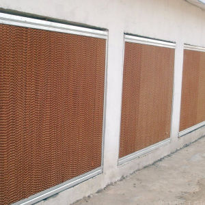 Evaporative Cooling Pad for Poultry House/Greenhouse pictures & photos
