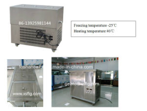 6000 PCS Per Day Popsicle Machine Come with Ataforma Molds pictures & photos