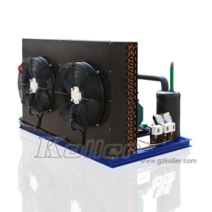 Newest Design of VCR100 Cold Room & Ice Machine Plant pictures & photos
