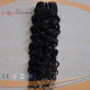 Top Quality Afro Curly Human Hair Weaving, Hair Wefts, Hair Extension pictures & photos