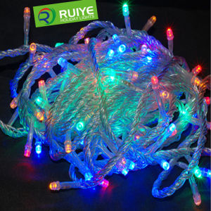 LED Christmas Multicolor Light for Outdoor and Indoor Decoration pictures & photos