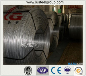Wire Drawing Material Factory Cold Draw Iron Wire/ Raw Material of Nail Making/Excellent Line