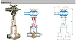Power Station High Temperature Gate Valve (Z941H) pictures & photos