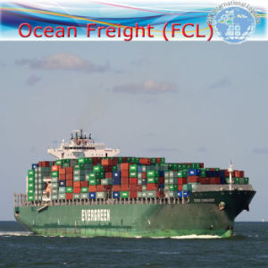 Sea Shipping From China to Worldwide by FCL Shipment (20′′40′′) pictures & photos
