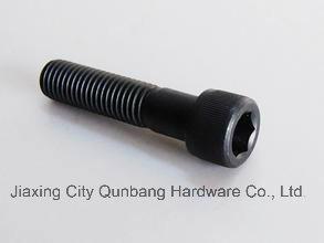 Hex Socket Head Cap Screw (Black M5-M42 DIN 912) pictures & photos