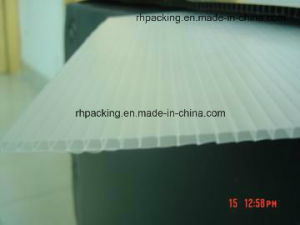 Transparent or Natural PP Plastic Sheet, Correx, Corflute, Coroplast Provider pictures & photos