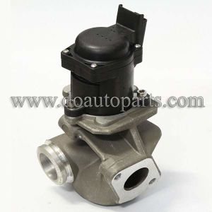Egr Valve 1618nr for Citroen/Ford/Peugeot pictures & photos