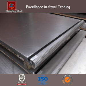 SAE 1006 Hot Rolled Steel Sheet (CZ-S16) pictures & photos