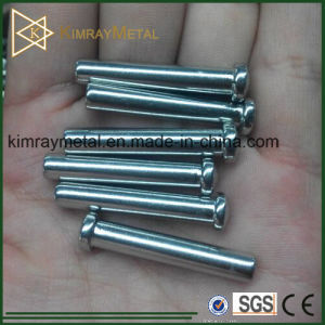 316 Stainless Steel Dome Head Wire Rope Swage Terminal pictures & photos