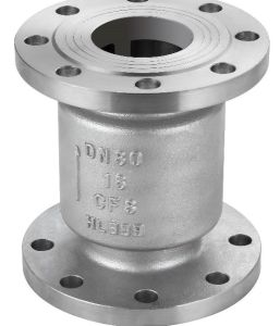 Vertical Lift Type Stainless Steel Flanged Check Valve pictures & photos