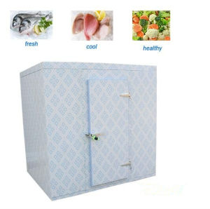 Walk in Freezer for Meat Storage Low Temperature pictures & photos