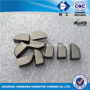 Hip Sintered Tungsten Carbide Soldering Tips A430 pictures & photos