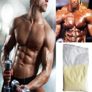 Good Credit 99.5% Purity Trenbolone Enanthate Steroid Anabolic pictures & photos