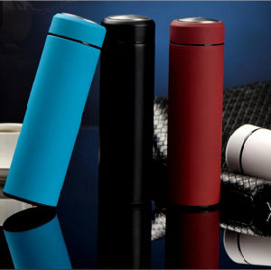 450ml Nice Frosted Double Stainless Steel Vacuum Thermos (DC-GSSY-500) pictures & photos