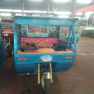 3 Wheel Tricycle with Simple Cabin pictures & photos