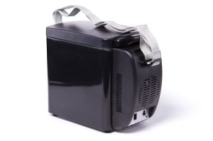 Portable Thermoelectric Mini Fridge 6liter DC12V, with Cooling and Warming Function pictures & photos