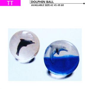 Bouncing Ball/Dolphin Ball/Bouncy Ball